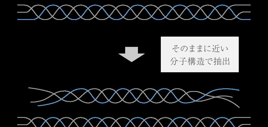 そのままに近い分子構造で抽出